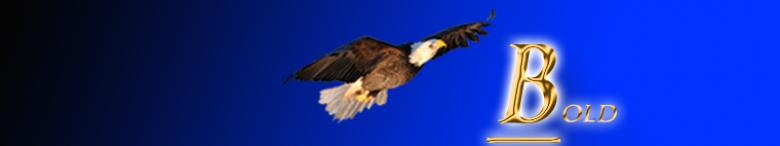 Header Image